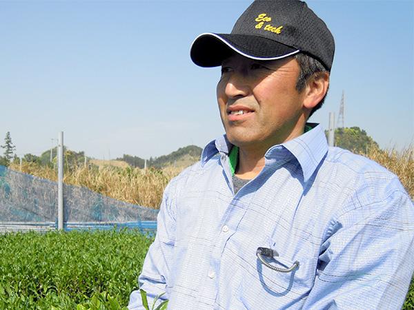 静岡 牧之原 自然薯栽培方法 長谷川氏