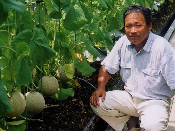 メロン農家の鈴木さん