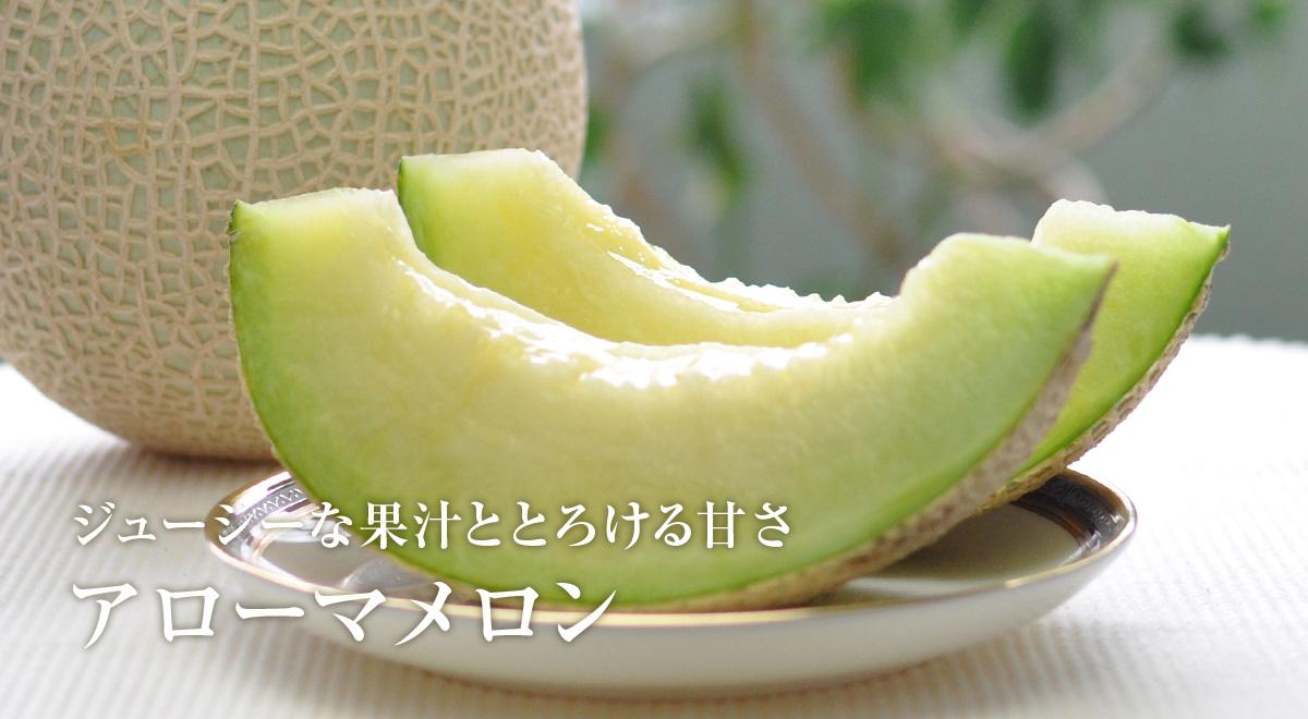 静岡・磐田 アローマメロン