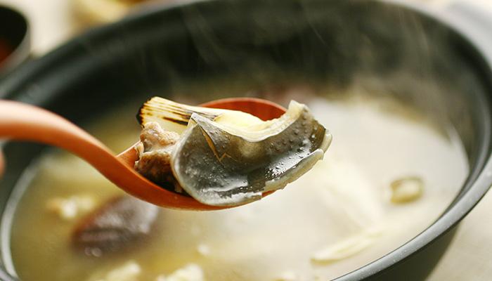 活すっぽんですっぽん鍋
