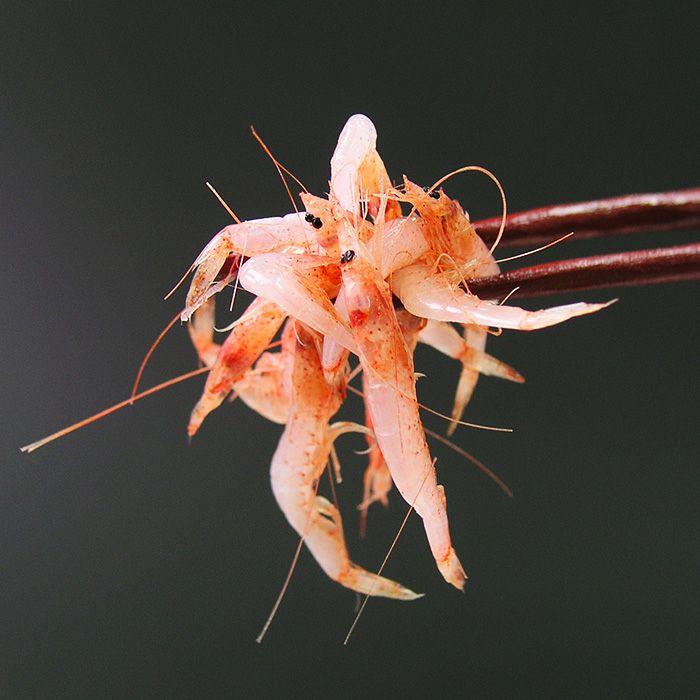 静岡・由比 生桜えびイメージ