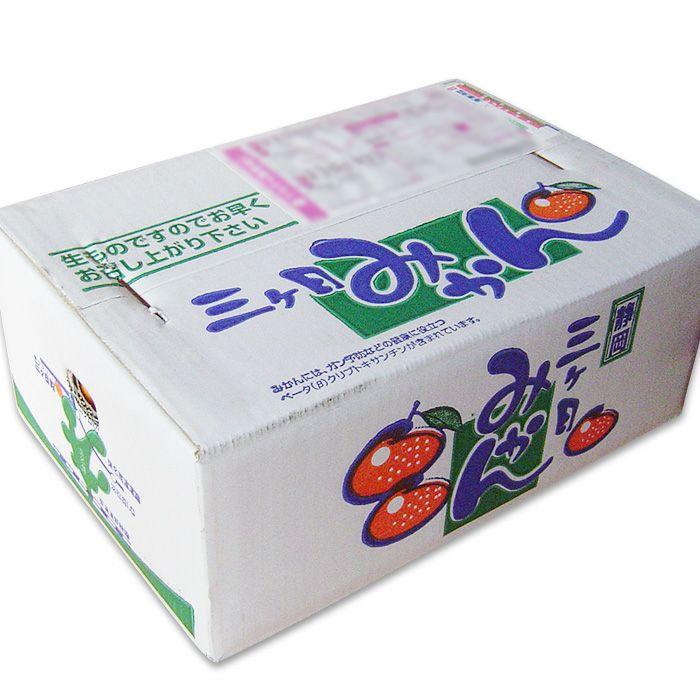 黒柳さんちの 三ケ日みかん 青島 箱