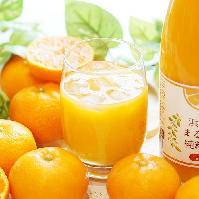 三ヶ日みかんジュース「浜名湖まるごと純粋搾り」720ml